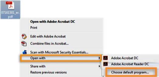 windows application error when opening pdf