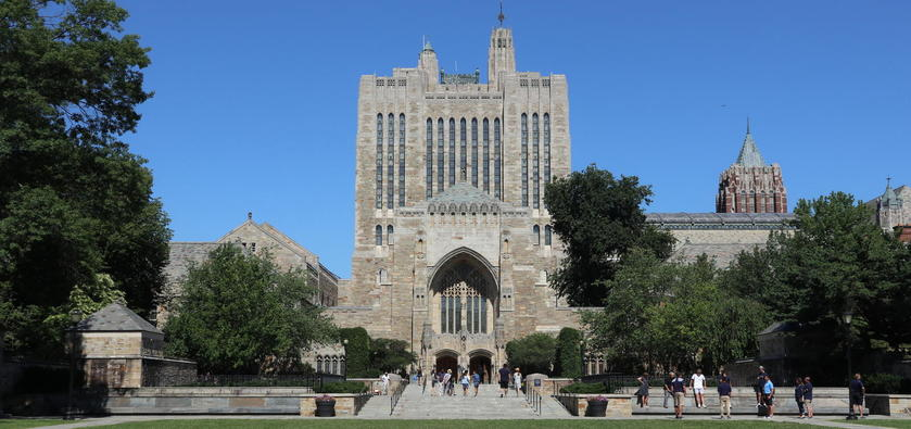 university of new haven application fee